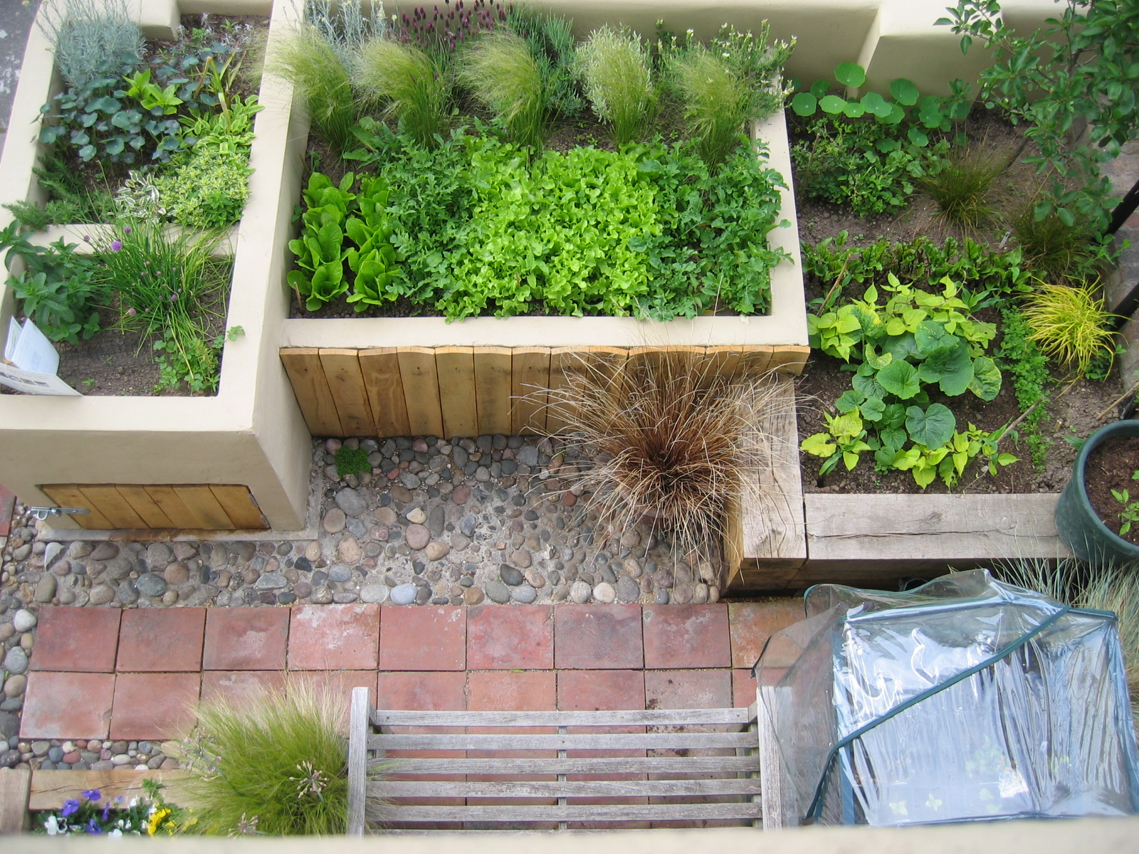 Urban vegetable garden katherine edmonds garden design for Backyard patio landscaping