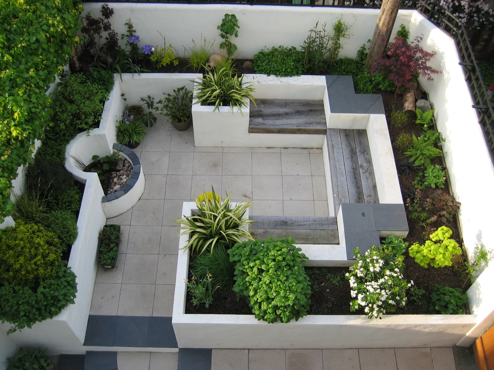 Modern courtyard garden katherine edmonds garden design for Courtyard landscaping pictures